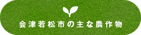 会津若松市の主な農作物